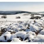 verschneite Landschaft von Tulpe-Production