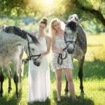 verträumte Pferdefotos auf der Weide von Tulpe-Production