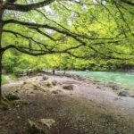 erlebnisreicher Wanderweg in der Tiefenbachklamm - Reisebericht Tulpe-Production.de