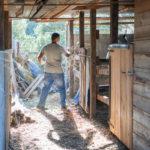 Stallarbeit auf dem Pferdehof Kreta