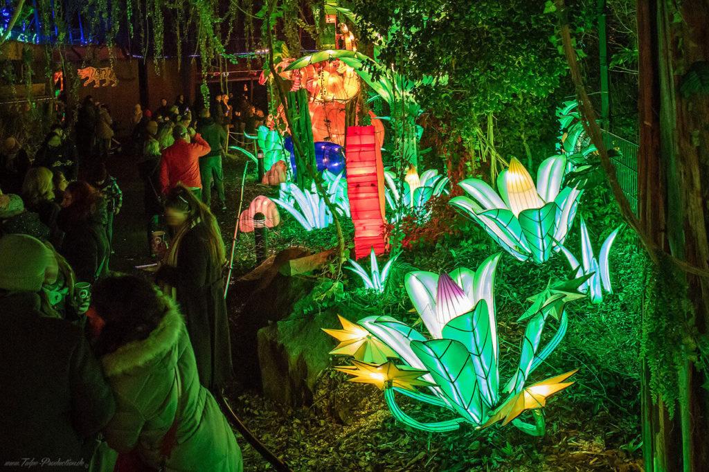 Beleuchtete Pflanzen aus Stahl und Seide Zoo Halle