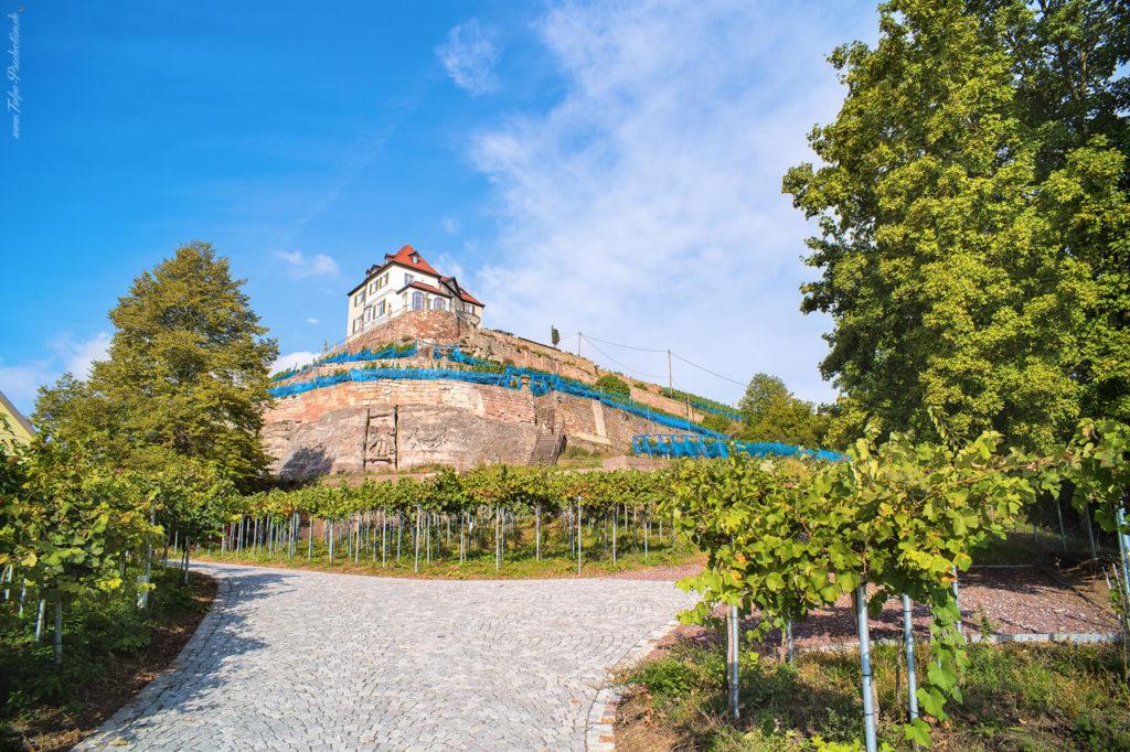 Urlaub in Corona-Zeiten -Reisebericht Naumburg