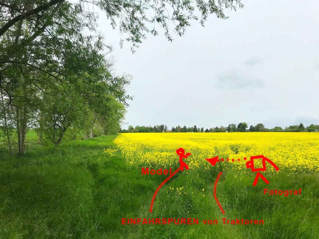 ökologischer Tipp um das Rapsfeld zu schonen